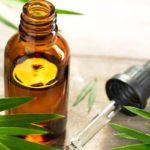 9 Cách sử dụng dầu cây trà để điều trị mụn trứng cá