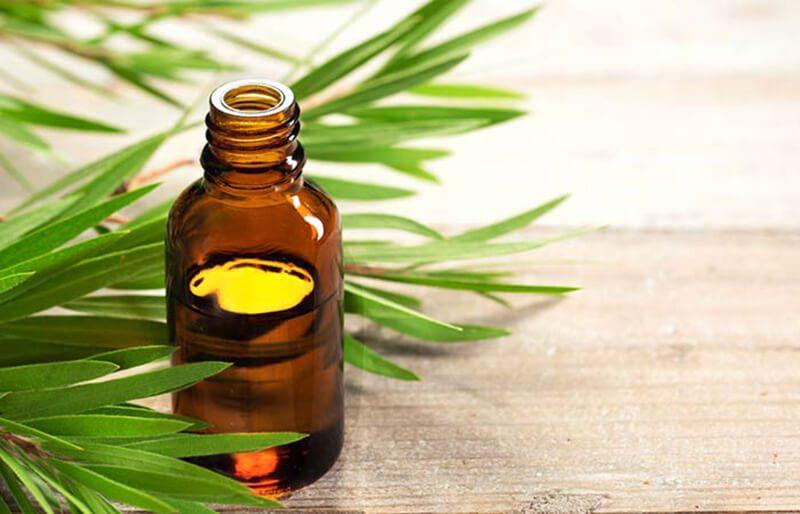 Tinh dầu Vitamin E và dầu cây tràm trà